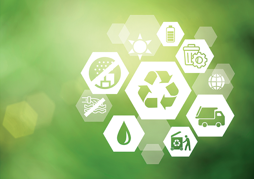 The environmental issues we currently manage include: